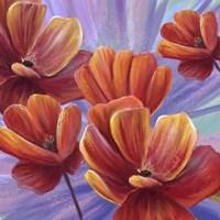 Fiery Poppies Fine Art Print
