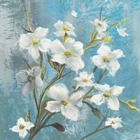 Jasmine Bloom 1 Fine Art Print