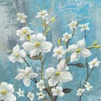 Jasmine Bloom 2 Fine Art Print