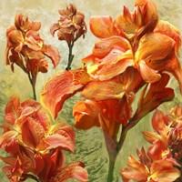 Orange Orchid Bloom Fine Art Print