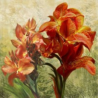 Orange Orchid Passion 1 Fine Art Print