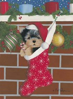 Yorkie Stocking Stuffer Fine Art Print