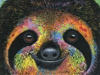 Slothy Eyes Fine Art Print