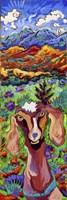 Mountain High Goat Fine Art Print