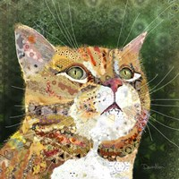 Ginger Tabby Fine Art Print