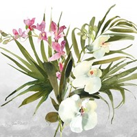 Beautiful Orchids A Framed Print
