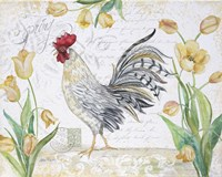Seasonal Rooster 4 Fine Art Print