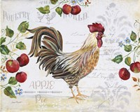 Seasonal Rooster 10 Fine Art Print