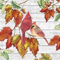 Fall Cardinals B Framed Print