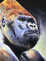 Gorilla - Silverback Fine Art Print