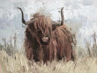 Scottish Highland Bull B Fine Art Print