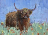 Scottish Highland Cow Fine Art Print