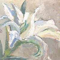 Lily 1 Fine Art Print