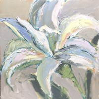 Lily 2 Fine Art Print