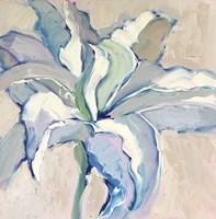 Lily 4 Fine Art Print