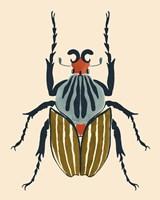 Beetle Bug I Framed Print
