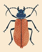 Beetle Bug III Framed Print