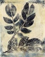 Presence of Nature V Fine Art Print