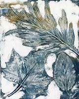 Presence of Nature VI Fine Art Print