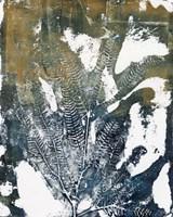 Presence of Nature VII Fine Art Print
