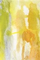 Golden Reflections I Framed Print