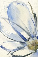 Cobalt & Paynes Petals I Framed Print