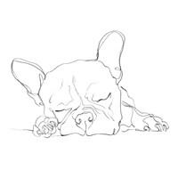 French Bulldog Contour I Fine Art Print