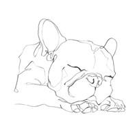 French Bulldog Contour II Fine Art Print