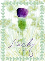 Lucky Shamrock I Framed Print