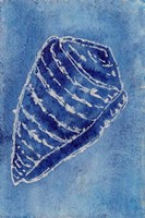 Cerulean Shells II Framed Print