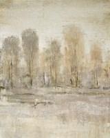 Peaceful Forest II Framed Print