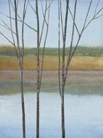 Between Water II Framed Print