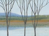 Between Water IV Framed Print
