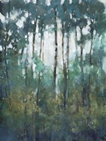 Glow in the Forest II Framed Print