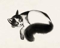 Cat Laze I Fine Art Print