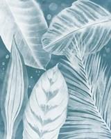 House Plant Jungle II Framed Print