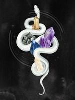 Crystalline Serpent II Fine Art Print