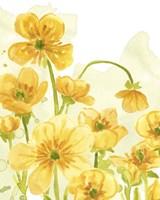 Sunshine Meadow III Framed Print