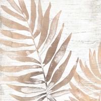 Neutral Palm Fossil II Framed Print