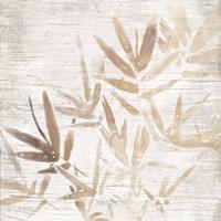 Neutral Palm Fossil IV Framed Print