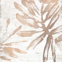 Neutral Palm Fossil VI Framed Print