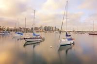 Calm In Reflection San Diego Fine Art Print