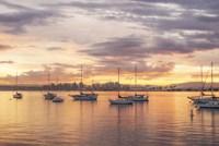 Magical Morning Hues In San Diego Fine Art Print