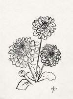 Floral Ink Study V Framed Print