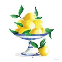 Spanish Lemons II Fine Art Print