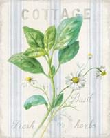 Floursack Herbs IV Fine Art Print