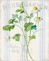 Floursack Herbs II Fine Art Print