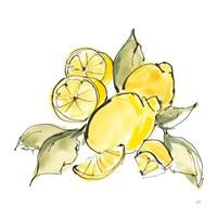 Lemon Still Life III Framed Print