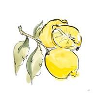Lemon Still Life II Framed Print
