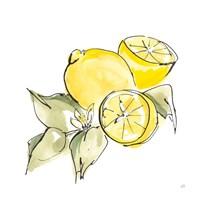 Lemon Still Life I Framed Print